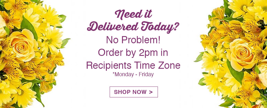 Same-Day Delivery, No Problem!