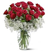 Roses: Two Dozen Deluxe Red Roses